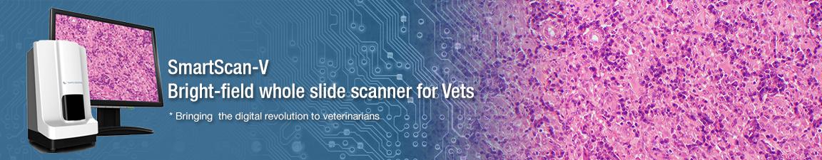 inside banner with slide scanner image